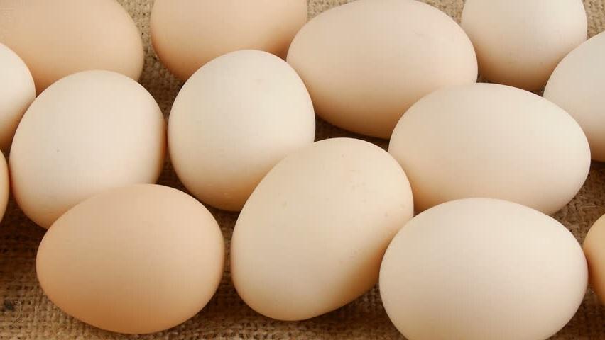 НАЧАЛО ПУТИ Яичная диета