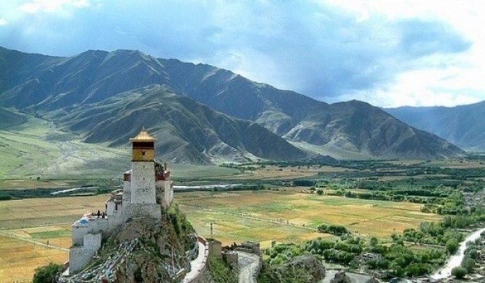 Тибетская диета: основные принципы питания